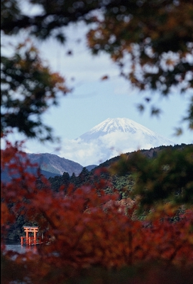 fuji-san from hakone JH1