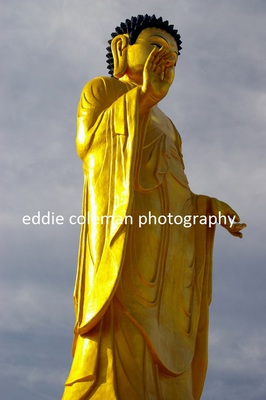 the golden buddha statue - MUB 6
