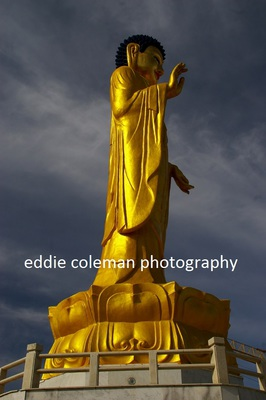 the golden buddha statue - MUB 7