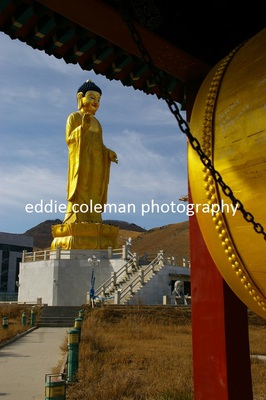 the golden buddha statue - MUB 10