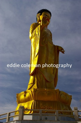 the golden buddha statue - MUB 5